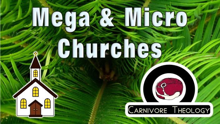 Mega and Micro Churches