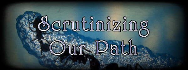 Scrutinizing Our Path
